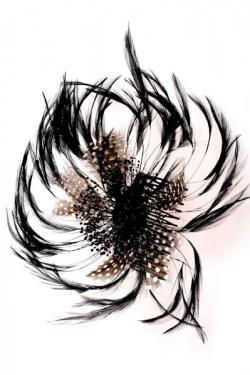 ornements pour cheveux plumes mariage. Black Bedroom Furniture Sets. Home Design Ideas