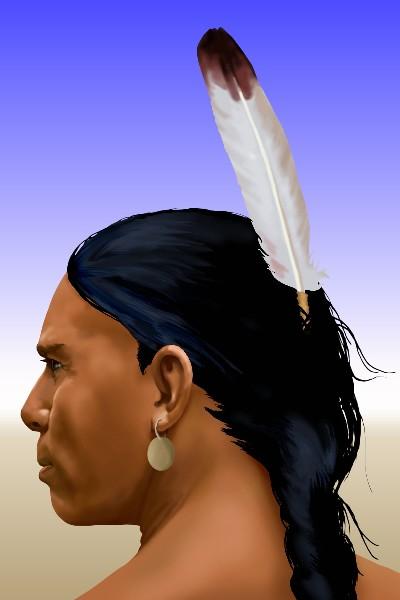 Les plumes dans la culture indienne - Plume dans les cheveux ...